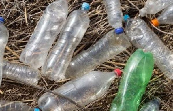 אל תזרקו לפח את בקבוקי הפלסטיק שלכם! הנה 12 דרכים אדירות להשתמש בהם מחדש