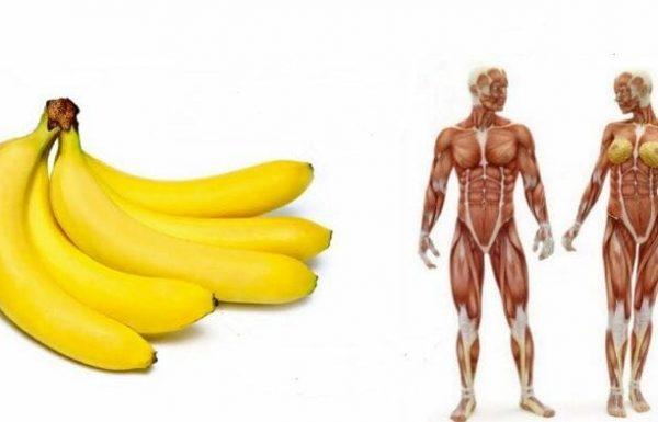 אתם יודעים מה קורה בגוף שלכם אם אתם אוכלים 2 בננות כל יום במשך חודש?