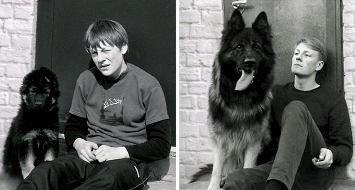 20 תמונות לפני ואחרי מרגשות בטירוף של חיות מחמד גדלות עם הבעלים שלהן