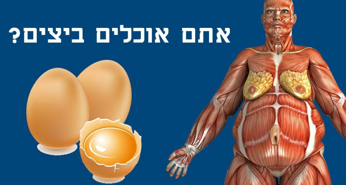 רופאים חושפים: זה קורה בגוף שלכם כשאתם מתחילים לאכול שתי ביצים ביום