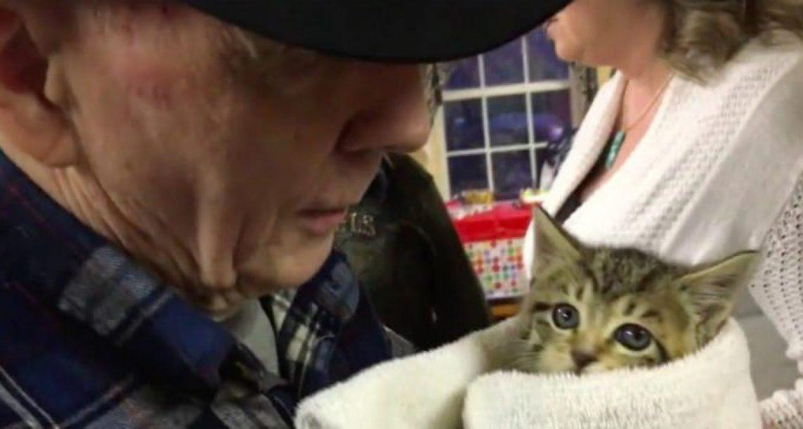 גיבור מלחמה בן 87 נזרק מביתו ונתבע מכיוון שהאכיל חתולים בשכונה