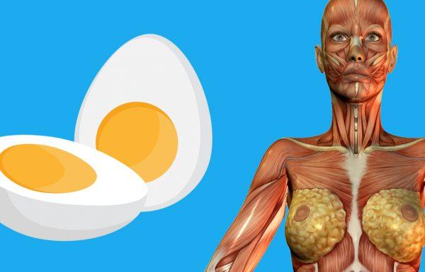 9 דברים שיקרו לגוף שלכם אם תתחילו לאכול 2 ביצים ביום