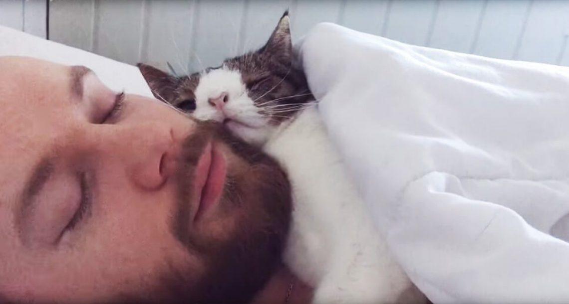 האיש הזה אימץ את 'החתול הכי לא רצוי' בבית המחסה. שגרת השינה שלהם כל כך חמודה