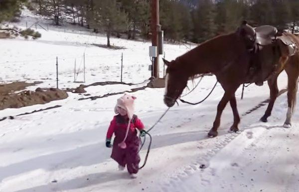 הסרטון הזה של ילדה בת שנתיים והסוסה שלה מתפשט ברשת כמו אש בשדה קוצים