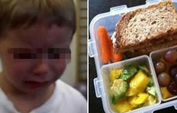 ילד בן 4 נותר בדמעות אחרי שהגננת השליכה את ארוחת הצהריים שלו לפח. אמר שלא יאכל בגן שוב