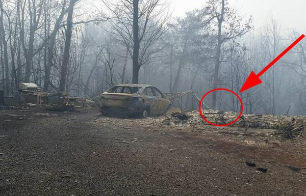שרפה ענקית הקיפה את בית המשפחה והכריחה אותה לברוח – 24 שעות אחר כך, הכל השתנה