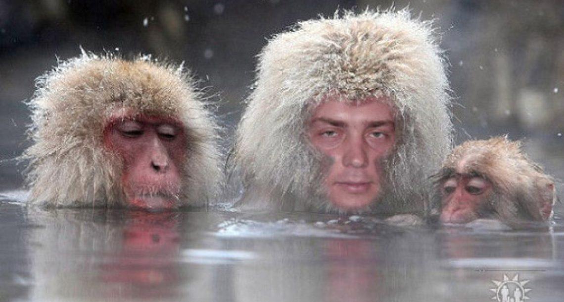24 תמונות פוטושופ מחרידות שנמצאו ברשתות החברתיות ברוסיה