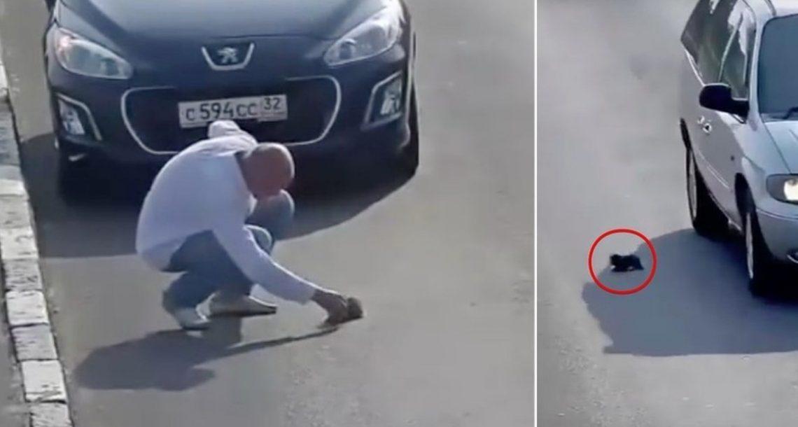 אדם עצר באמצע כביש סואן כדי להציל את חייו של גור חתולים שנפל מרכב נוסע