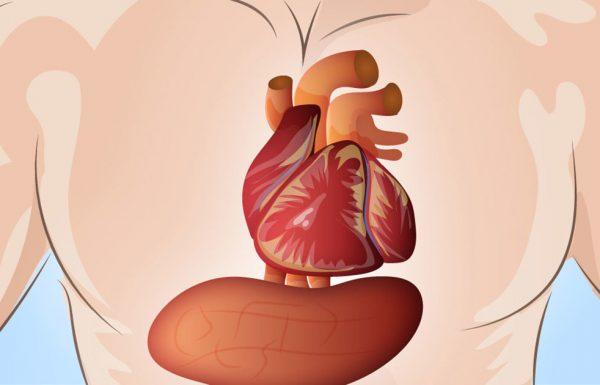 הגוף שלכם מזהיר אתכם חודש אחד לפני התקף לב – הנה הסוד שכולם צריכים להכיר