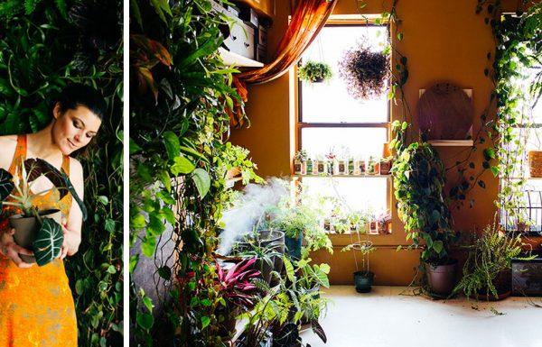 האישה הזו הפכה את הדירה שלה לג'ונגל עירוני, עם יותר מ 500 צמחים ושתילים