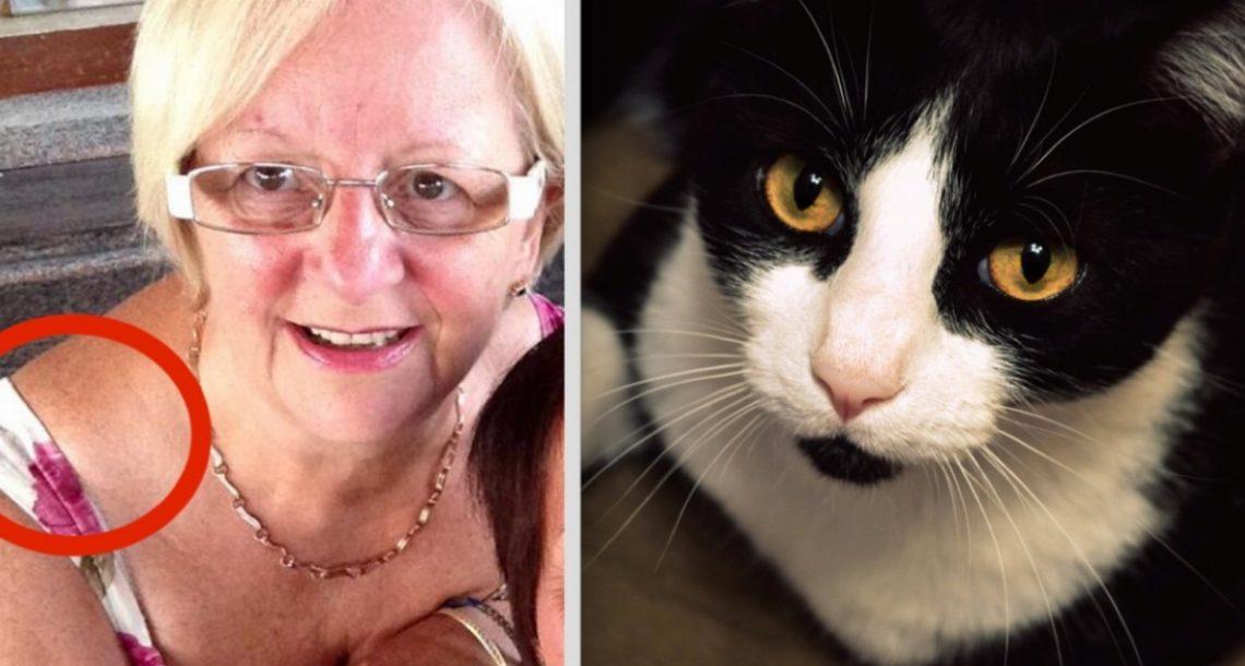 החתול של אישה בת 64 החל להתנהג בצורה מוזרה – אך אז היא הבינה שהוא מנסה לומר לה משהו