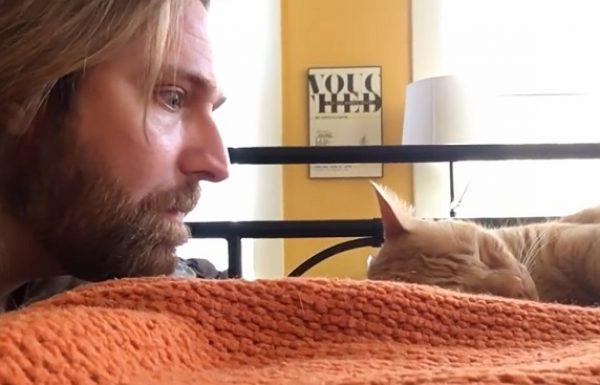 החתול מעיר אותו בכל יום ב 4 בבוקר. אז הבעלים שלו החליט לנקום בו…