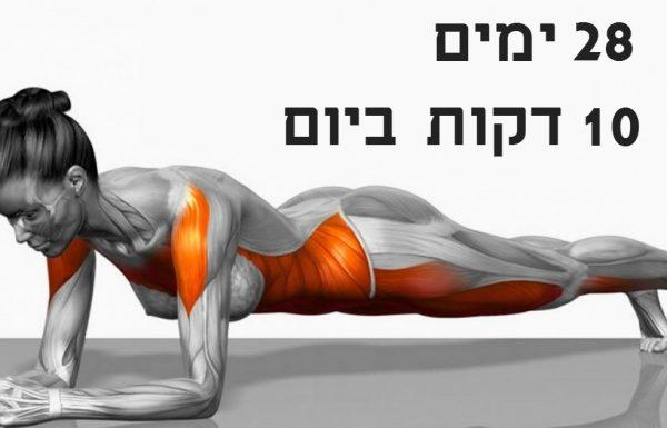 7 התרגילים הפשוטים האלה ישנו לכם את הגוף מקצה לקצה תוך 4 שבועות בלבד!