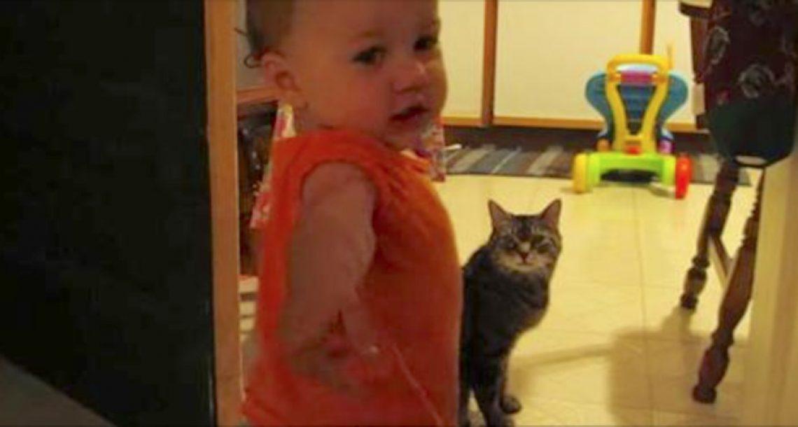 אבא תעד את שגרת הבוקר הקורעת מצחוק בין הבת שלו לחתול