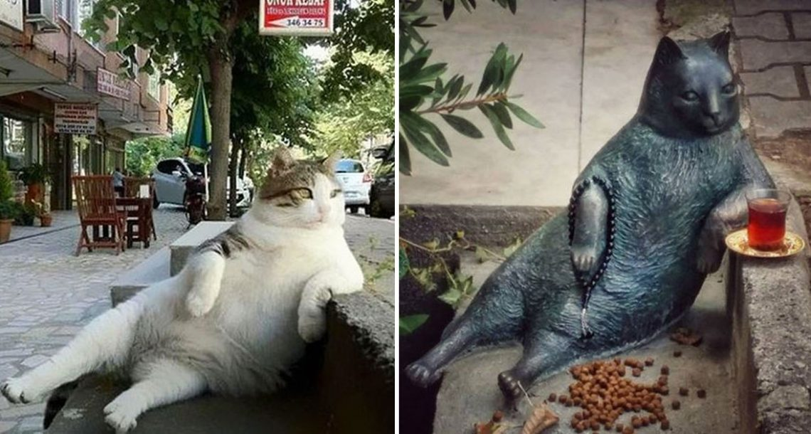 חתול רחוב מפורסם הלך לעולמו, אז העירייה כיבדה את זכרו עם פסל במקום האהוב עליו