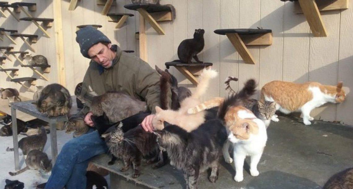 לזכר בנו בן ה 24 שנהרג בתאונה, האדם הזה הציל מאות חתולים ובנה להם לונה פארק שלם