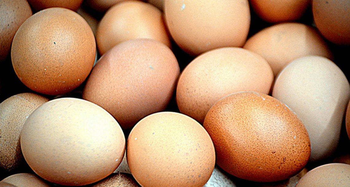 14 מזונות שאסור לכם לעולם לאחסן במקרר