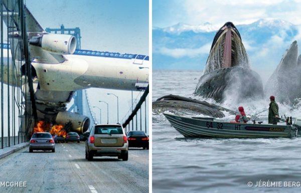 30 התמונות הכי מדהימות שאי פעם ראיתי שצולמו בתזמון מושלם