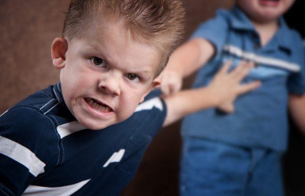 מחקר חדש קובע: לאחים קטנים יש סיכוי גדול יותר להפוך לפושעים