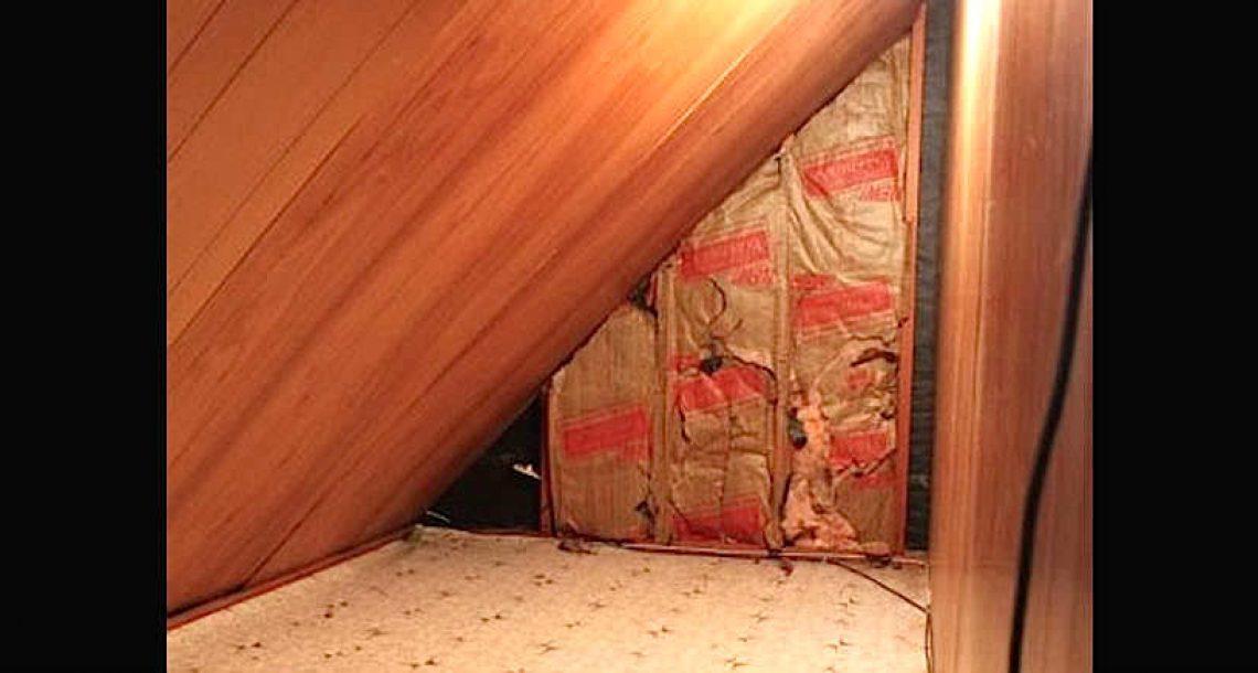 אמא גילתה חדר סודי מאחורי השידה של בנה בן השנתיים – פתחה את הדלת וקיבלה את השוק של החיים