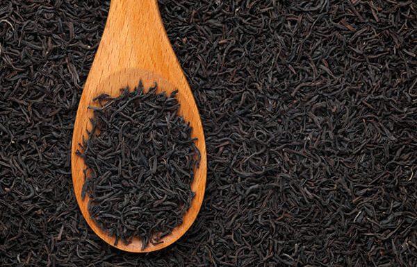 זאת הסיבה שאמא תמיד שמה תה שחור על העור שלה אחרי יום בים. לא האמנתי לה עד שניסיתי בעצמי