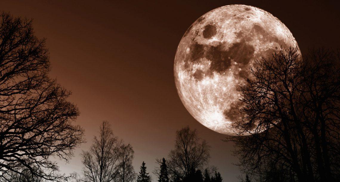 הירח הכי גדול מאז 1948 – גלו מתי תוכלו לראות אותו