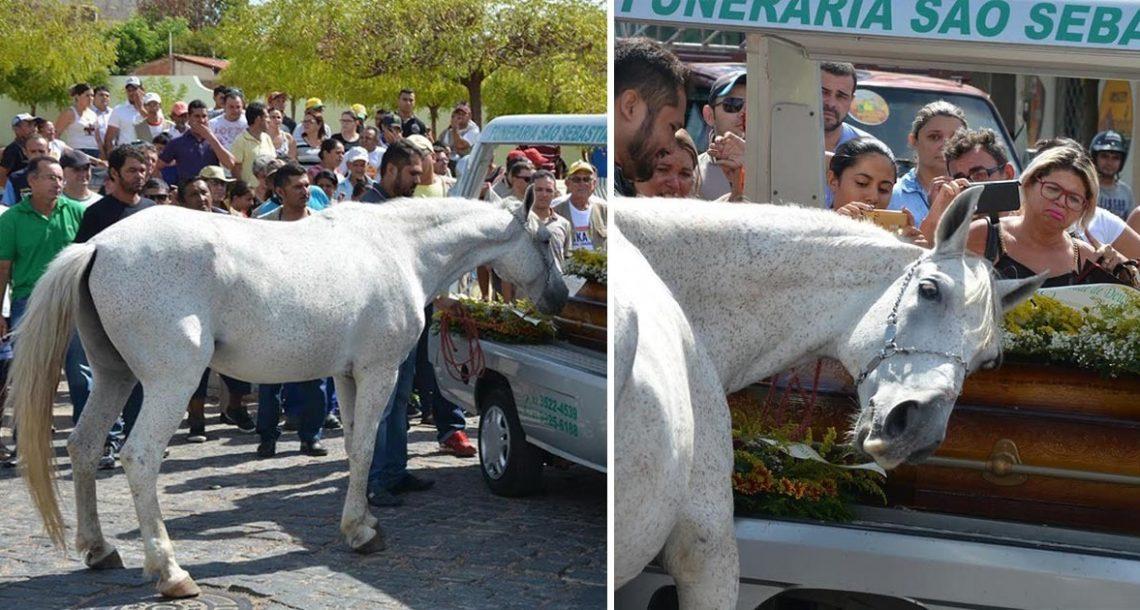 הבעלים של הסוס מת בתאונת דרכים. ומה שהסוס עשה בהלוויה הדהים את כולם