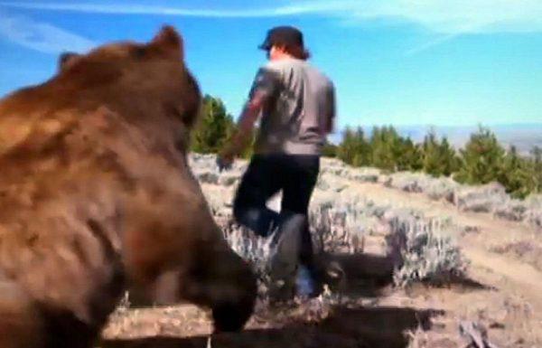 """הבחור הזה הציל גור דובים נטוש. 6 שנים לאחר מכן, הוא החבר הכי טוב של דוב ששוקל 360 ק""""ג"""